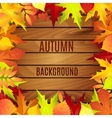 Beautiful background with autumn leaves on wooden vector image vector image