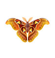 butterfly icon 3d realistic butterfly insect with vector image vector image