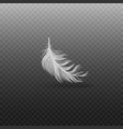 falling and soft realistic white bird feather with vector image vector image
