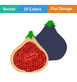 Flat design icon of Fig fruit vector image vector image