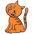 kitten or cat cartoon animal character vector image vector image