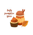 pumpkin spice latte and cupcake flat vector image