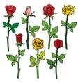 Red roses with flower buds isolated on vector image vector image