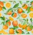 seamless mandarin floral pattern fruit vector image vector image