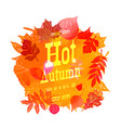 autumn sale off sign o vector image