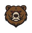 bear logo mascot icon template vector image vector image