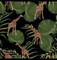 beautiful tropical giraffe seamless pattern vector image