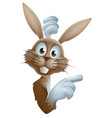 cartoon easter rabbit pointing vector image vector image