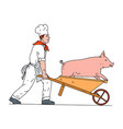 chef pushing wheelbarrow and pig color drawing vector image vector image