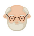 colorful face of bearded grandfather with a few vector image vector image