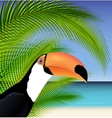 Exotic trip card with palm tree and Toucan vector image vector image