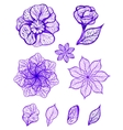 Set of ink isolated colorful flowers vector image vector image