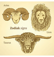 Sketch zodiac signs vector image
