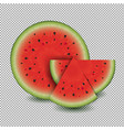 water melon with transparent background vector image vector image