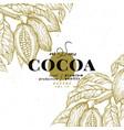 cocoa bean tree design template chocolate cocoa vector image vector image