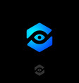eye icon web tracking monitoring logo view webcam vector image