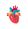 human heart icon in flat style vector image
