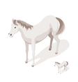 Isometric 3d of horse vector image vector image