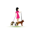 Lady walking dogs vector image vector image