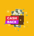 leather wallet with money and cashback vector image vector image