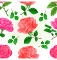 seamless texture three flower pink roses vector image vector image