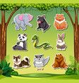 set of animal sticker vector image vector image