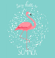 summer creative poster with pink flamingo vector image vector image