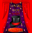 amazing circus poster composition vector image vector image