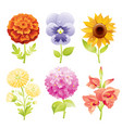 autumn flower icon set cartoon floral blossom vector image