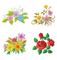 Cultivated flowers set vector image vector image