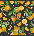mandarin watercolor floral background vector image vector image