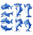 shark in different positions vector image vector image