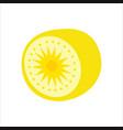sliced kiwi fruit comes vector image vector image