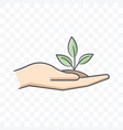 small plant on palm hand icon on transparent vector image