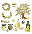 oil olive tree food bottle label vector image vector image