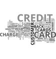 when credit cards are disputed text word cloud vector image vector image