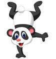 Panda cartoon standing on his hand vector image