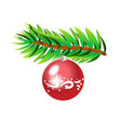 green spruce branch with red ball isolated vector image vector image