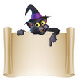halloween cat scroll sign vector image vector image