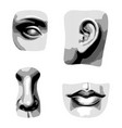 hatched drawing face parts in antique style vector image