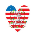independence day cards united states america vector image