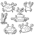 set with crab and algae vector image vector image