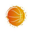 watercolor effect of a basketball ball vector image