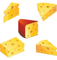 cheese collection vector image vector image