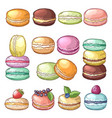 colored of delicious macaroons vector image vector image