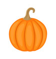 colorful pumpkin isolated on vector image vector image