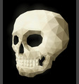 low poly with isolated white skull vector image