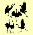 ostrich limpkin birds stork heron silhouette vector image vector image