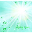 Spring card background with sun and leaves vector image vector image