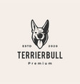 terrier bull dog hipster vintage logo icon vector image vector image